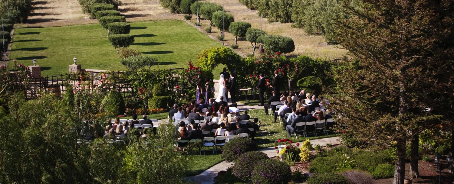 Wedding at The Purple Orchid Wine Country Resort & Spa Livermore