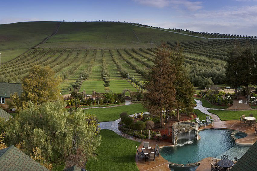 Purple Orchid Wine Country Resort Spa Livermore Ca