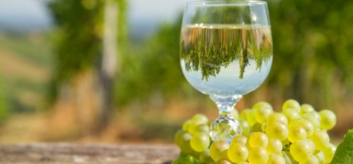 Enjoy a glass of white wine at Wente Vineyards