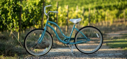 a Bicycle on field at a vineyard on a livermore bike trail
