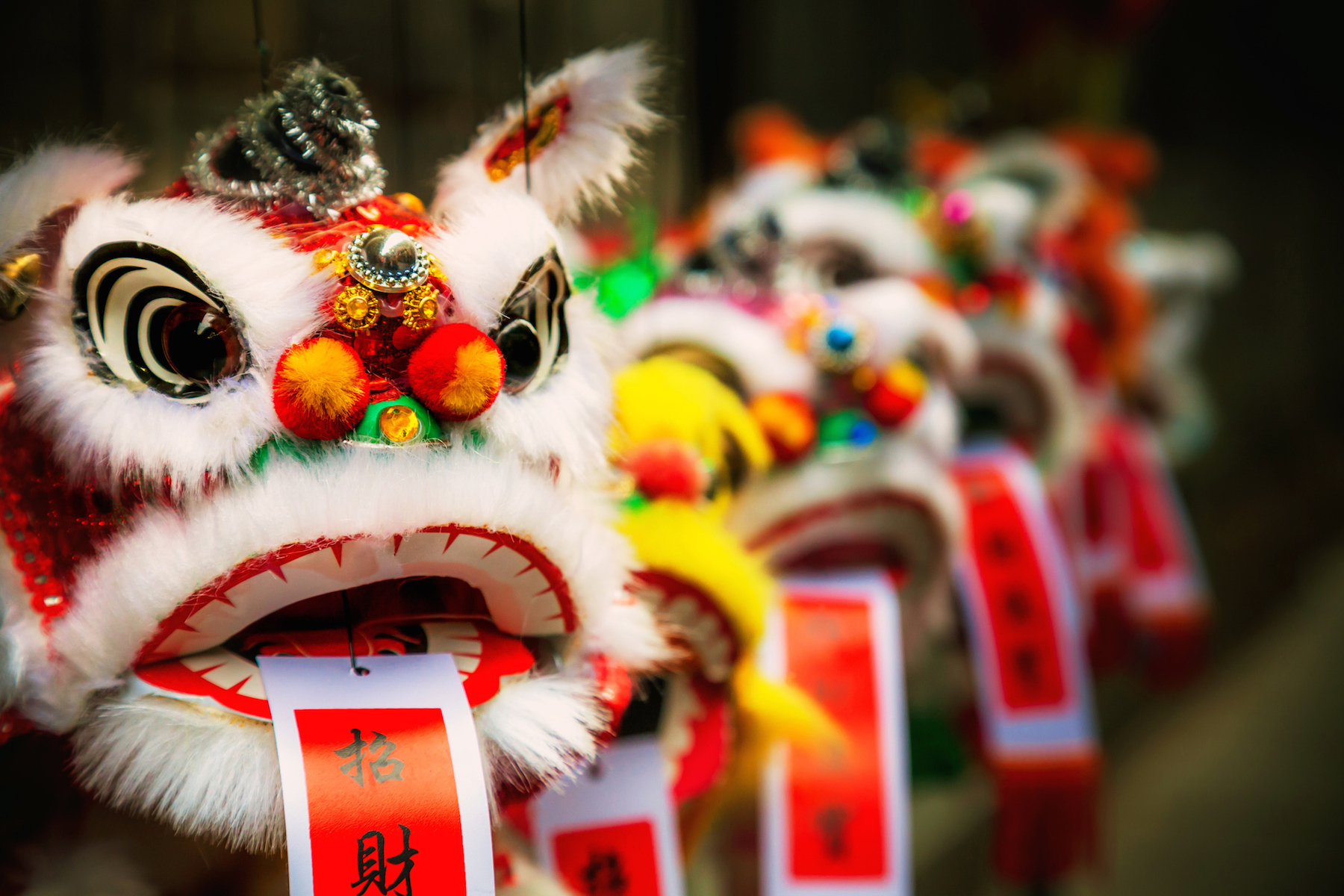 Everything You Need To Know About The Chinese New Year Parade In San Francisco The Purple Orchid Wine Resort Spa
